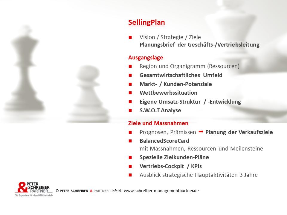 Umsetzung der Vertriebsstrategie mit dem Selling-Plan
